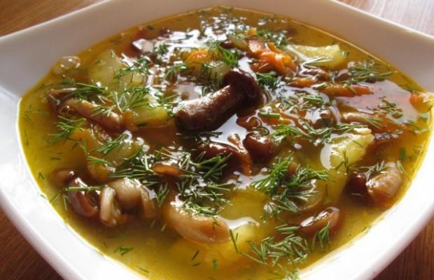 грибной суп 1