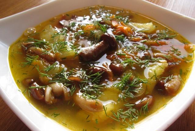 Блюда с замороженными белыми грибами рецепты простые и вкусные
