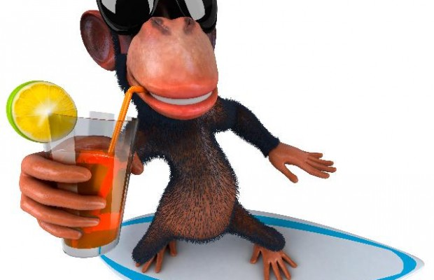 статусы про обезьян