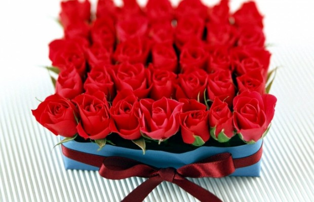 праздник влюблённых 15
